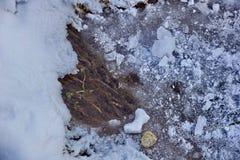 明亮的小河在冬天 冰雪水流量石头alg 库存照片