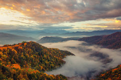 明亮的斜坡小山使山投下顶层类型环境美化 秋天日出 免版税库存图片