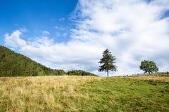 明亮的星期日 天空 云彩 carpathians 山 星期日 库存图片