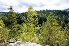 明亮的星期日 天空 瀑布 carpathians 山 星期日 免版税库存图片