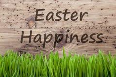 明亮的木背景, Gras,文本复活节幸福 库存照片