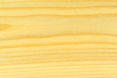 明亮的杉木纹理木头 库存图片