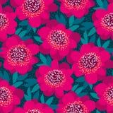 明亮的桃红色和红色装饰山茶花花 图库摄影