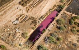明亮的桃红色坑 库存照片