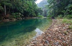 明亮的浓雾森林高例证密林层质量河日落超级稀薄的唯一水 库存照片