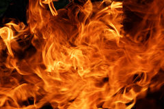 明亮的火背景 库存照片