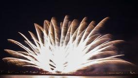明亮的烟花在与遥远的城市光和海waater的蓝天破裂了 免版税库存照片