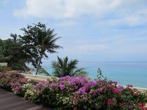 明亮的热带生长在阳台的花和灌木俯视蓝色海洋 库存照片