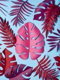 明亮的热带纸叶子 图库摄影