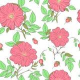明亮的狂放的玫瑰色样式 库存照片