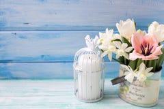 明亮的白色黄水仙和郁金香花,在绿松石的蜡烛 图库摄影