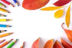 明亮的秋叶和色的铅笔在纸片说谎 库存图片