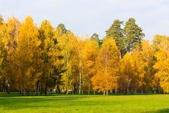 明亮的秋天公园风景 免版税库存照片