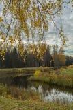 明亮的秋天水风景 库存图片