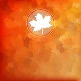 明亮的秋天背景。EPS 10 免版税库存图片