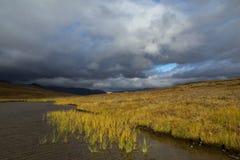 明亮的秋天颜色在山寒带草原 库存图片