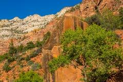 明亮的秋天风景在锡安国家公园 库存照片
