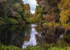 明亮的秋天风景 免版税图库摄影