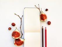 明亮的秋天结构的写生簿、无花果和树枝 平的位置,顶视图 免版税库存图片