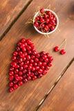 明亮的红色新近地被采摘的早期的甜樱桃 免版税库存图片