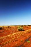 明亮的红色澳大利亚沙漠,西澳州 免版税库存照片