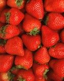 明亮的红色草莓 免版税库存图片