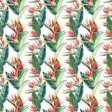 明亮的美好的绿色花卉草本热带可爱的夏威夷逗人喜爱的多色夏天样式的在牛排的热带黄色花 向量例证