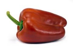 明亮的胡椒红色 免版税图库摄影