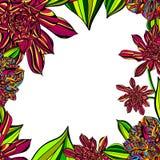 明亮的花卉热带框架 免版税库存图片