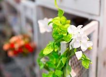 明亮的花美丽的藤本植物  免版税库存照片