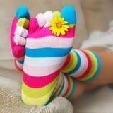 明亮的袜子 库存照片