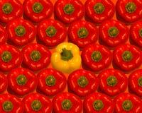 明亮的辣椒粉红色成熟 免版税库存图片