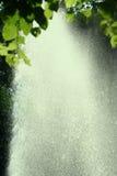 明亮的雨 图库摄影