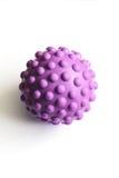 明亮的颜色橡胶知觉球  库存图片
