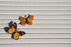 明亮的黄色红色蝴蝶的摄影图片在阳光下在自然白色木背景 免版税库存图片
