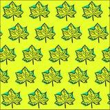 明亮的黄色蓝色样式:槭树叶子 免版税库存图片