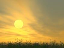 明亮的黎明桔子 图库摄影