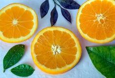 明亮的水多的橙色切片和叶子,盖用wa下落  免版税库存图片