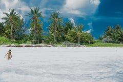 明亮的晴朗的棕榈滩用乳状白的海洋水 免版税图库摄影