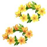 明亮的黄色花花卉花圈,传染媒介 库存照片