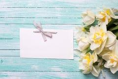 明亮的黄水仙花和空标识符在绿松石绘了w 库存图片