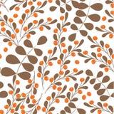 明亮的l秋天传染媒介无缝的背景红色莓果房檐山脉灰oakautumn背景 免版税库存图片