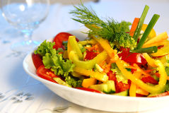 明亮的salad6 图库摄影