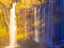 明亮的shiraito瀑布风景 免版税库存图片