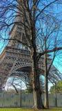 明亮的winter& x27;s天在巴黎 库存图片