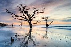 黎明前沿海卡罗来纳州海滩风景 免版税库存图片