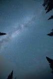 明尼苏达银河 库存照片