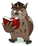 明智的猫头鹰 皇族释放例证