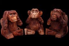 明智的猴子三 免版税图库摄影