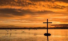 黎明鸟飞行十字架 图库摄影